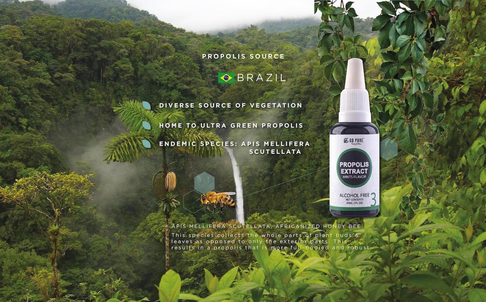 Brazilian Ultra Green Propolis