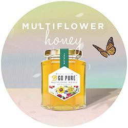 Go Pure Natural Multiflower Honey
