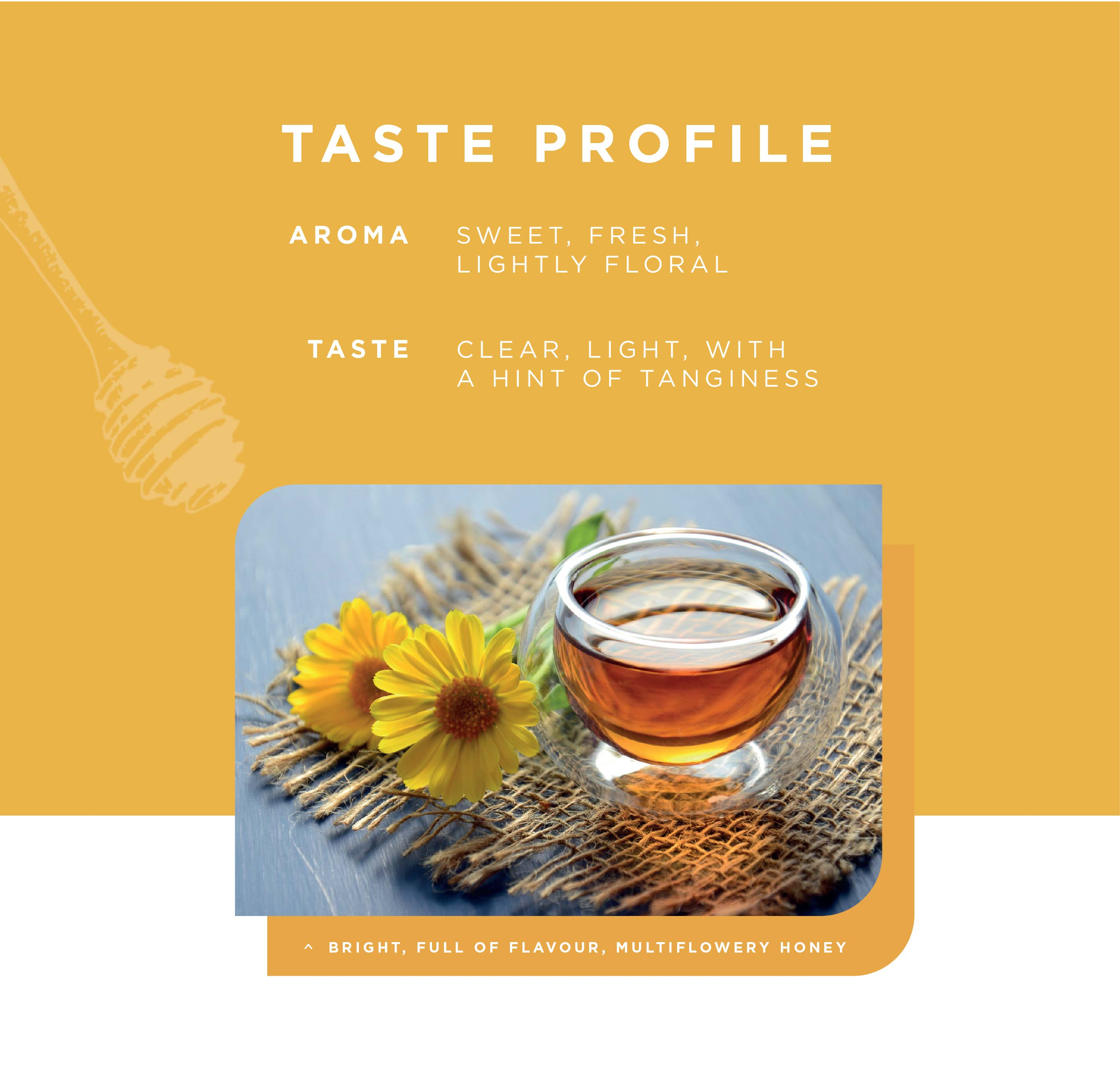 Taste Profile Multiflower Honey